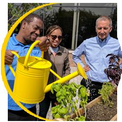 corporate social responsibility - vertical gardening teamwork at creative werks
